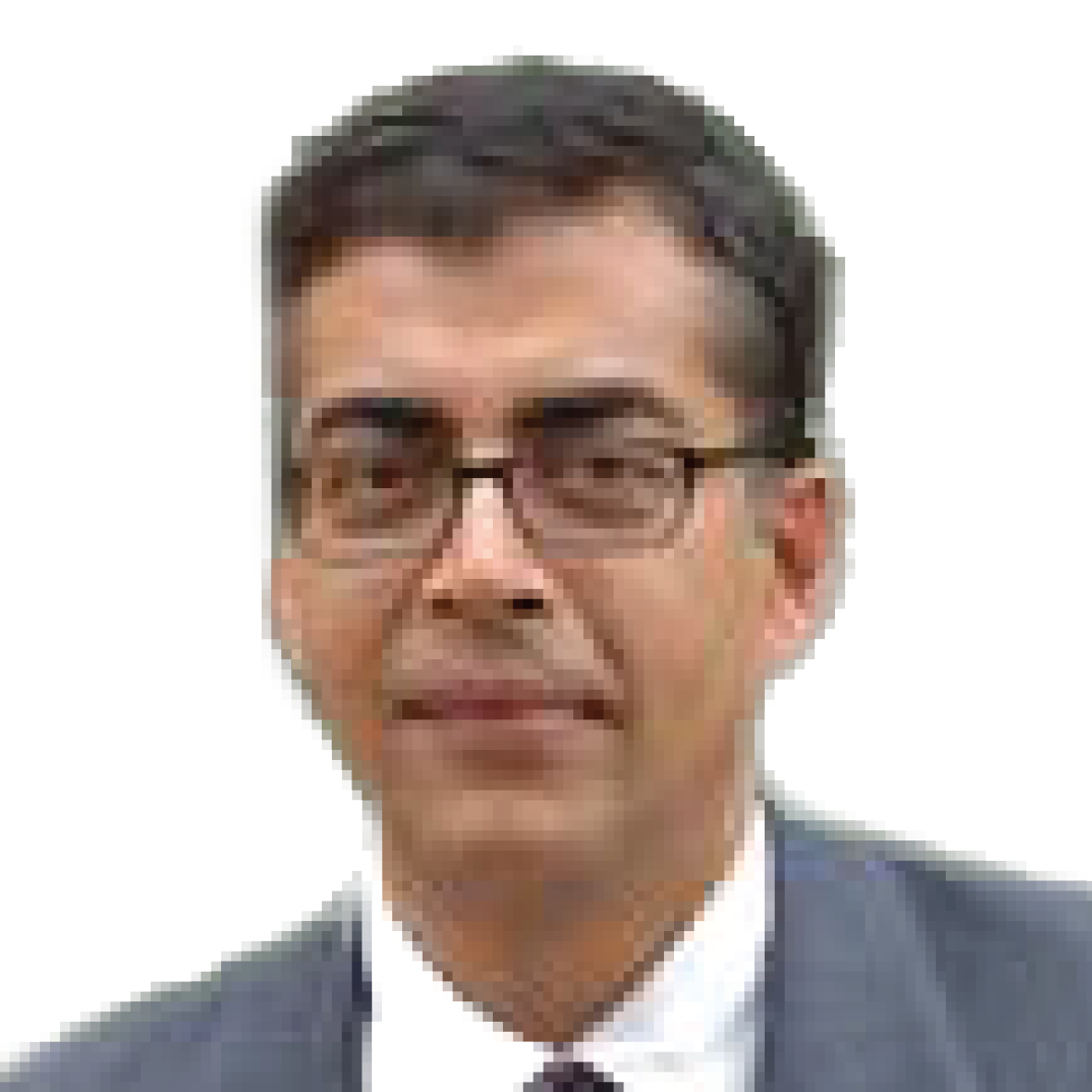 Pankaj Ghemawat, Professor of Strategy Management, IESE Business School, Spain
