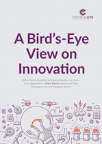 A Bird's-Eye View on Innovation