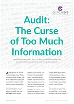 Audit: The Curse of Too Much Information