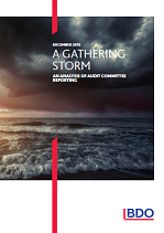 A Gathering Storm: An Analysis of Audit Committee Reporting