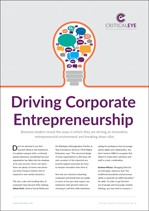 Driving Corporate Entrepreneurship