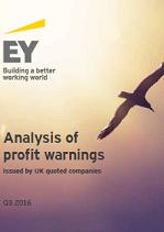 Analysis of Profit Warnings