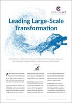 Leading Large-Scale Transformation