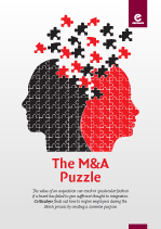 The M&A Puzzle