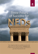 Three Pillars of Success for NEDs