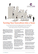Turning Your Executives into a Team