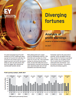 Diverging Fortunes: An Analysis of Profit Warnings