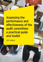 A Practical Guide: Assessing the Audit Committee