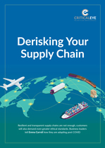 Derisking Your Supply Chain